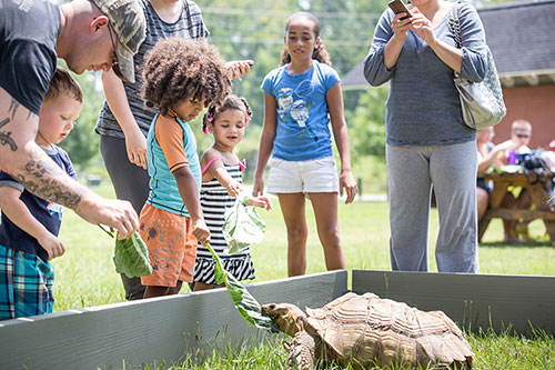 Oxbow Meadows Environmental Learning Center